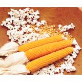 Кукуруза Гостинец (попкорн)